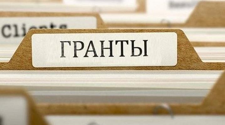 В Вологде выделили 1,2 млн. рублей на реализацию проектов НКО