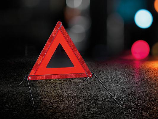 В Череповце молодой водитель сбил насмерть двух пешеходов